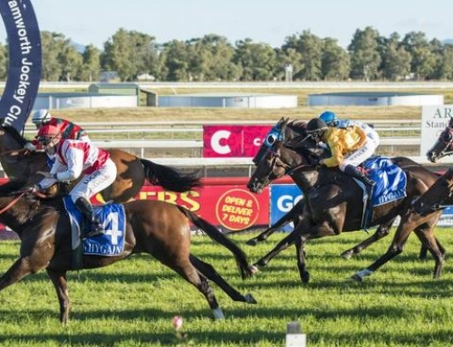 TOUGH PRINCE TAKES TAMWORTH CUP