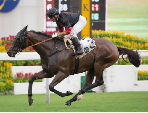 CASINO SIGNS OFF A WINNER IN HK