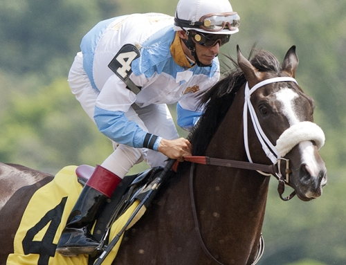 TOM'S READY FOR SARATOGA THEN SPENDTHRIFT