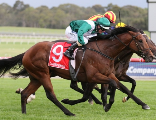 VILLERMONT ALL CLASS AT SANDOWN