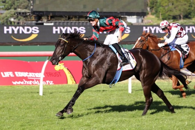 More Than Ready filly Spring Heat wins Gr.3