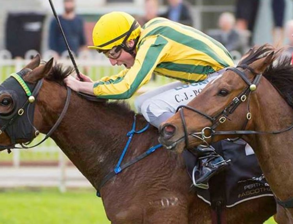 PERTH CUP PLANS FOR JACKPOT PRINCE