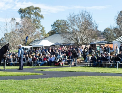 2018 VINERY OPEN DAYS