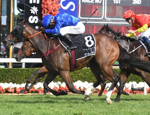 STARS AND STATS COULD ALIGN IN SLIPPER