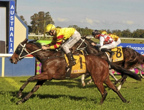 CHARMED RESULT FOR CASINO PRINCE