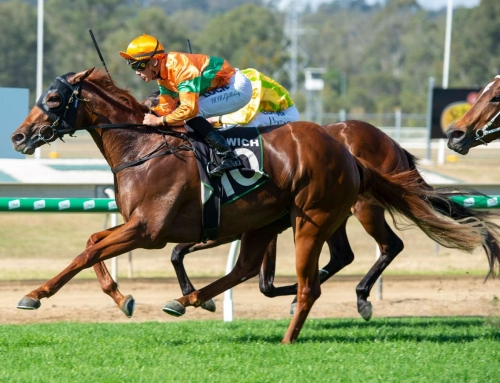 FATHER-SON RULE A WINNER FOR VINERY