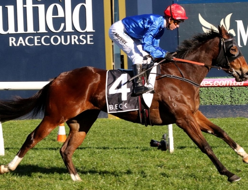 EXHILARATING WINNER OF QUEZETTE STAKES