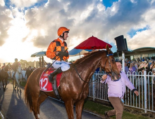 ALL TOO HARD ON CUE IN COFFS CUP