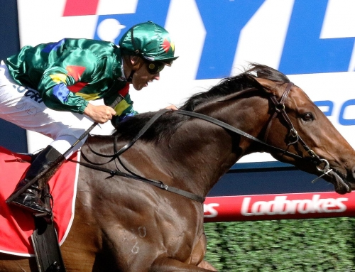 BLOOD WILL TELL IN CAULFIELD GUINEAS