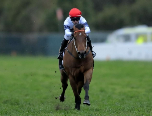 GOD OF THUNDER GOES THROUGH GEARS AT ROSEHILL