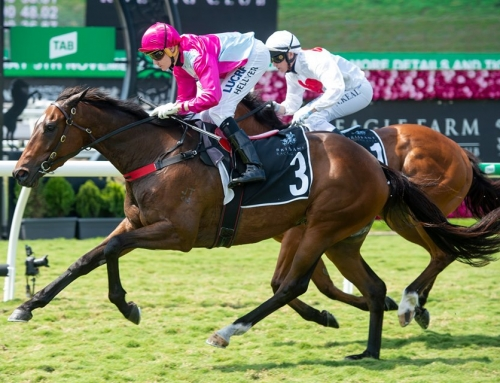 VINERY-SIRED STABLEMATES FIRING FOR VANDYKE