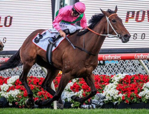 ALL TOO HARD DOUBLE AT MOONEE VALLEY