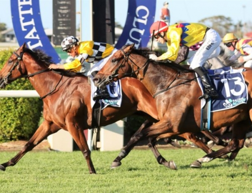 MOSSMAN'S MATE SET FOR MAGIC MILLIONS