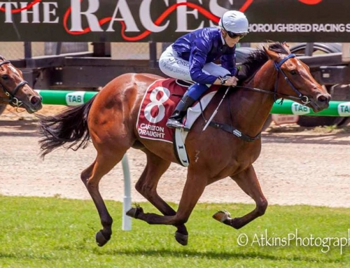 GROUP 1 GOALS FOR HEADWATER'S MILEVA