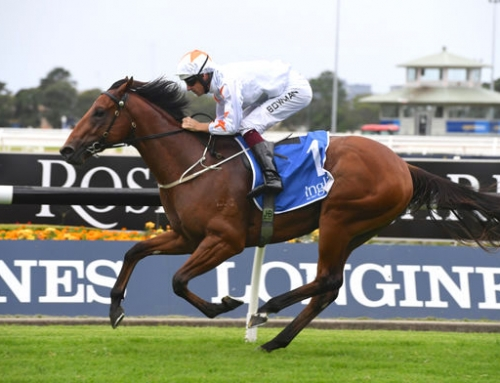 GROUP 1 GOALS FOR VINERY GRADUATES