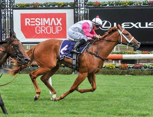 PROFESSIONAL HEADWATER WINNER AT FLEMINGTON