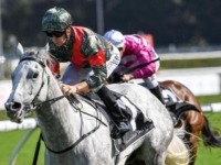 Mossman mare White Moss wins for Esplin family