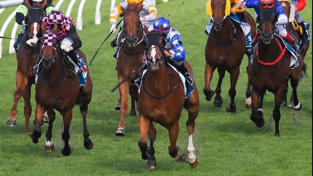 Mossman galloper Crack Me Up becomes his 3rd SWer this Spring