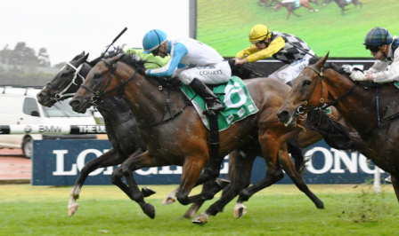 Testashadow claims Gr.3 Festival S for Testa Rossa