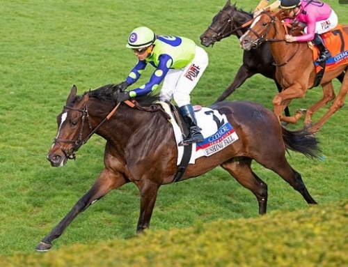 GROUP VICTORIES FOR CONSISTENT FILLIES