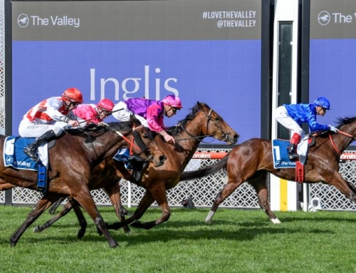 EXHILARATES ON SONG FOR SCARBOROUGH STAKES
