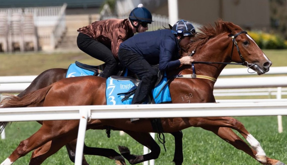 HEADWATER IN TOP 3 AT INGLIS READY 2 RACE