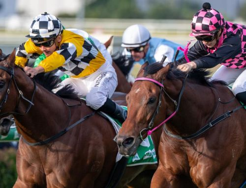 STRADBROKE IN SIGHT FOR TAMBO'S MATE