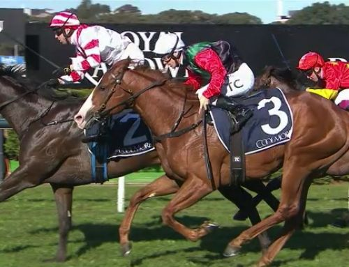 GUTSY GUNNAMATTA RALLIES AT RANDWICK