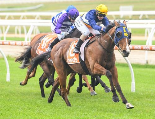 PAYNE MAKES A STATEMENT AT MORNINGTON