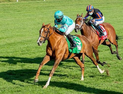 MORE THAN READY MARES FIRM FOR BREEDERS' CUP