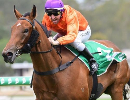 STAR MISS ON A MISSION FOR MAGIC MILLIONS