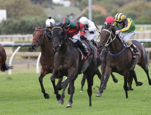 MORE THAN READY MARE TURNS UP THE HEAT