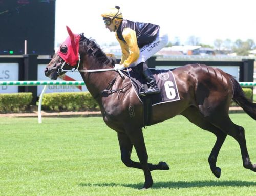 PERFECT BARRIER DRAW FAVOURS BABY WONG
