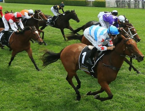MAGIC PRIZEMONEY FOLLOWS PERFECT SALE