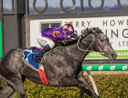 NEW STAKES WINNER FOR PRESSY HEADS TO GROUP 1