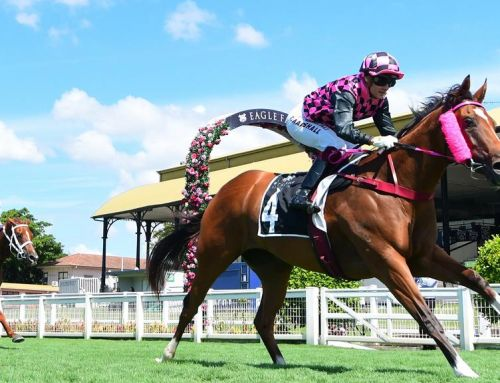 VINERY MEETS CHALLENGE AFTER EASTER SALE