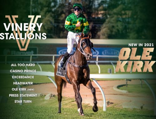 THE 2021 VINERY STALLION ROSTER