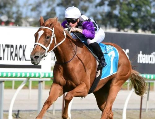 HOMEBRED IN HARMONY FOR QLD OAKS