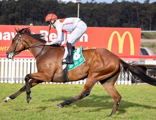 STAYER ON THE RISE FOR PRESS STATEMENT