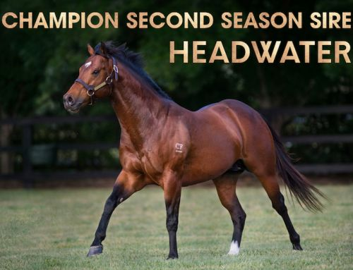 TWO SEASONS, TWO TITLES – UPWARDS FOR HEADWATER