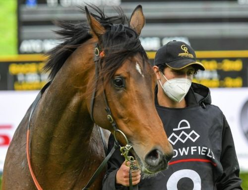 SPRING STAKES THE FOCUS FOR TRISTATE