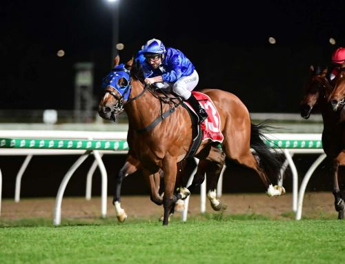 HEADWATER A WINNING SOURCE AT VINERY