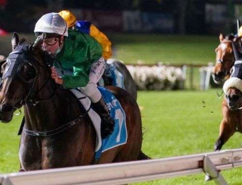 LIKELY LAD FRONTS FOR FLEMINGTON